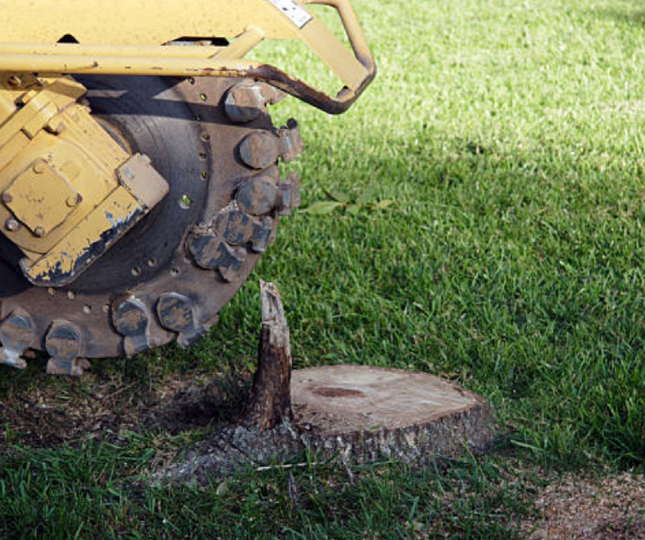 stump grinding and removal services