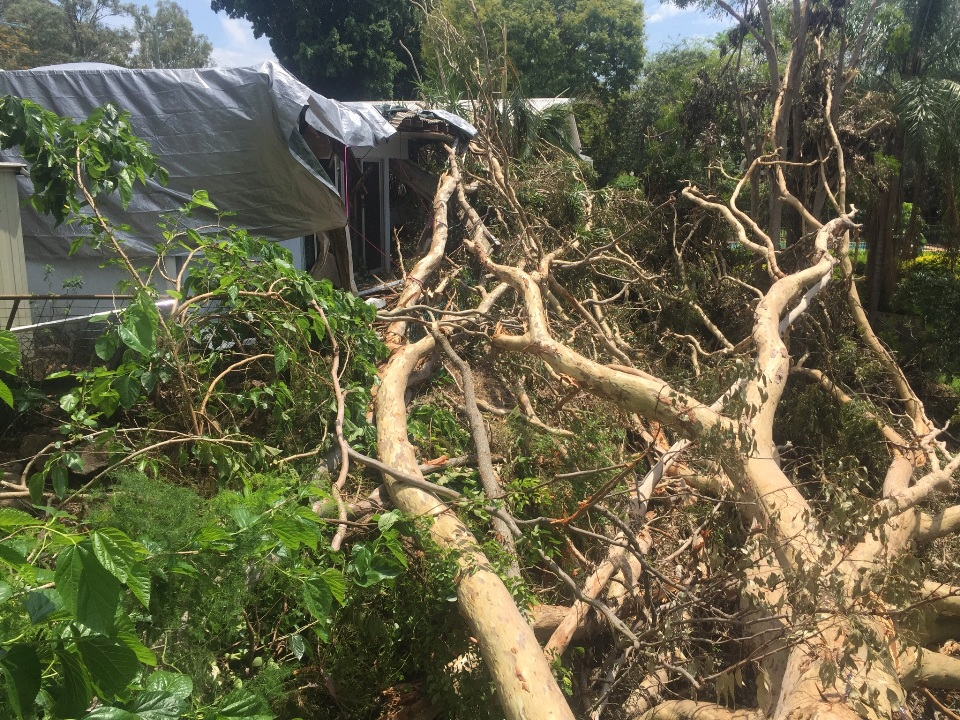 Storm Damage Removals