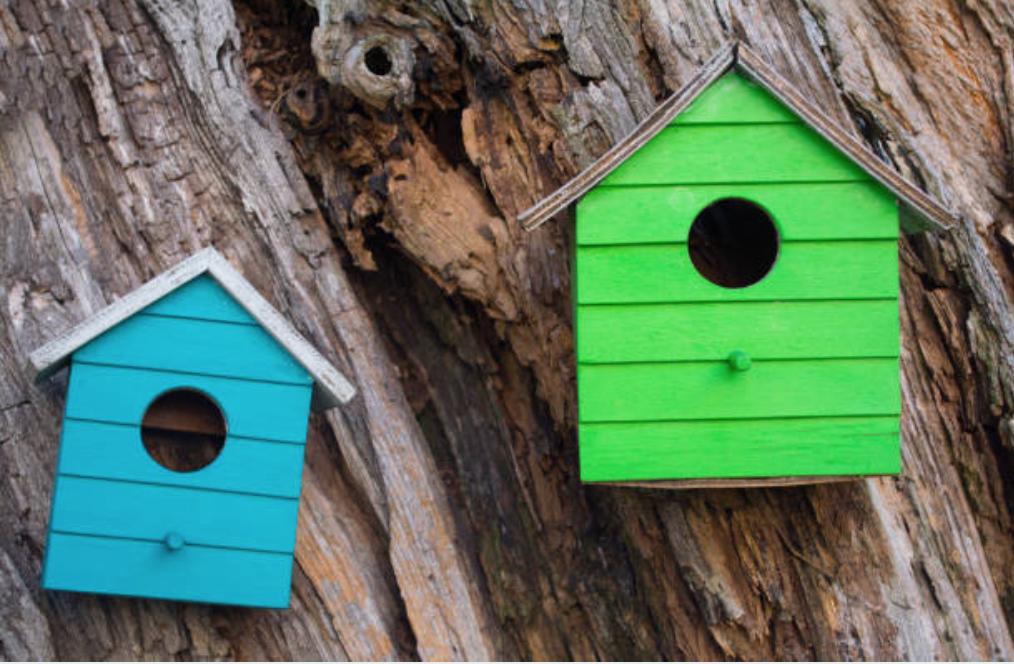Habitat Nesting Box Installation